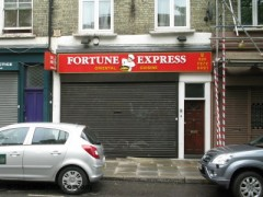 The Fortune Express image