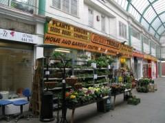 Avery Truman DIY & Garden Centre image