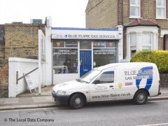Blue Flame Gas Services image
