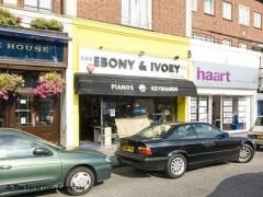 Ebony & Ivory image