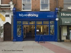 Blue Daisy image