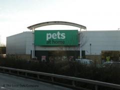 pets at home victoria road ruislip   pet shops amp pet