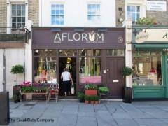 Aflorum image