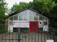 Ladybird image
