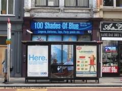 100 Shades Of Blue image