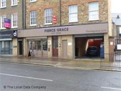 Fierce Grace image