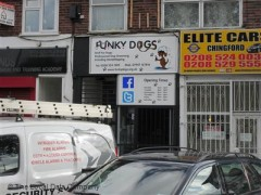 Funky Dogs image