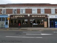 Carpatica image