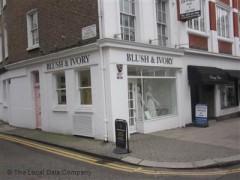 Blush & Ivory image
