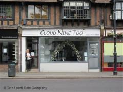 Cloud Nine Too image