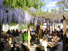Our favourite alfresco dining restaurants image