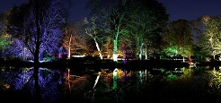 Kids in London: Syon Park's Enchanted Woodland image