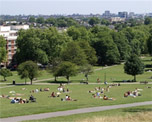 Hampstead Heath image