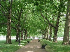 Green Park image
