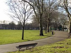 Highbury Fields image