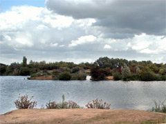 Eastbrookend Country Park image