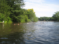 Hampstead Ponds image
