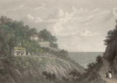Primrose Island: Keats and the Isle of Wight image