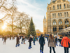 Natural History Museum Ice Rink image