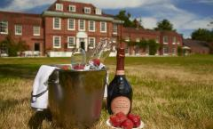 Stoke Place Summer Garden Party image
