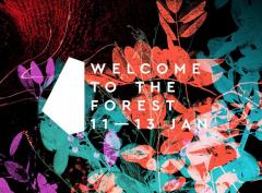 Welcome to the Forest image