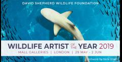 Wildlife Artist of the Year 2019 Exhibition image