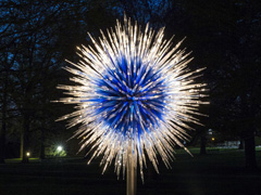 Chihuly at Kew: Reflections On Nature image