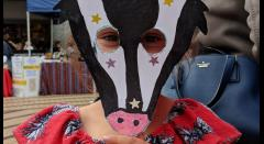Mask Madness with Polka (Mask and Craft for 7-11yrs) image