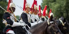 Her Majesty's Cavalry image