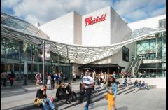 Westfield's Free Jungle Adventure image