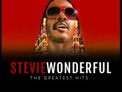 The Stevie Wonderful Show image