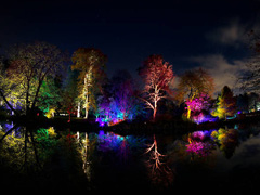 The Enchanted Woodland at Syon Park image