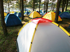 Camping & Outdoor Equipment image