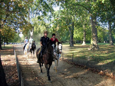 Go horse riding in Hyde Park image