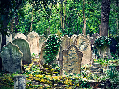 Take a tour of Highgate Cemetery image