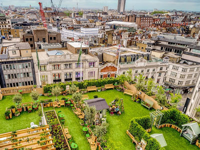 Escape the City at the John Lewis Rooftop Retreat image