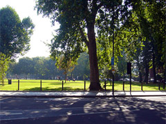 Brook Green image