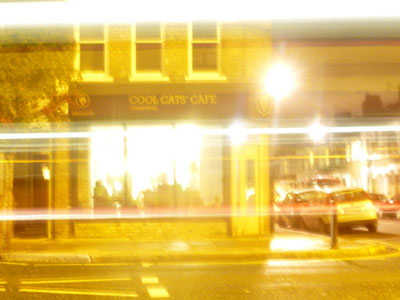 Cool Cats' Cafe image