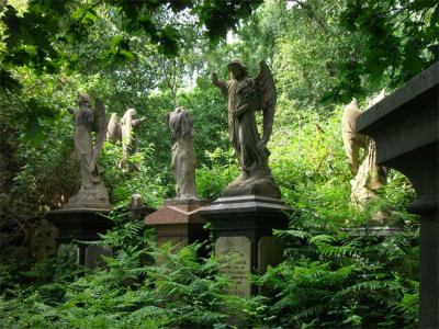 Take a walk through a magnificent cemetery image