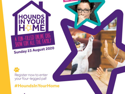 Hounds in your Home image