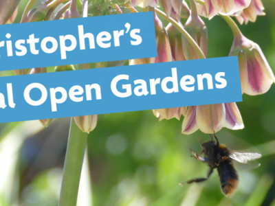 St Christopher's Virtual Open Gardens image