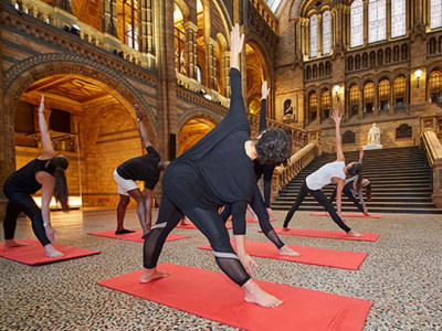 Yoga at the Natural History Museum image
