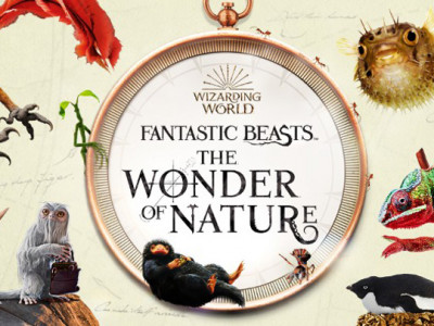 Fantastic Beasts and the Wonder of Nature image