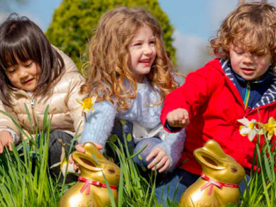 Easter Lindt Gold Bunny Hunt image